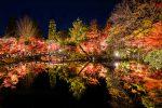 平安時代からの紅葉の名所・永観堂禅林寺