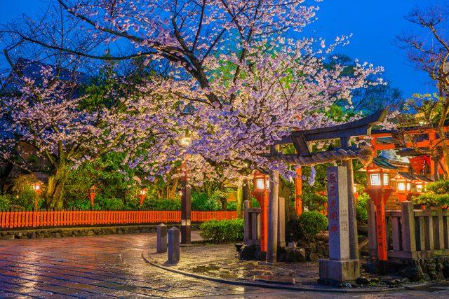 花街でしばし和に浸る・祇園