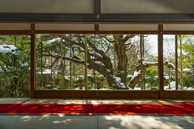 以画框庭园闻名的宝泉院