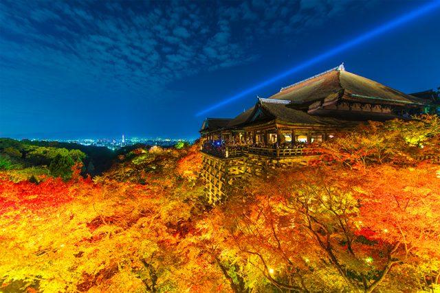 2019年秋!ライトアップ、夜の拝観が楽しめる京都のお寺特集