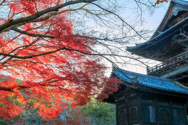 有着绝美景色的南禅寺