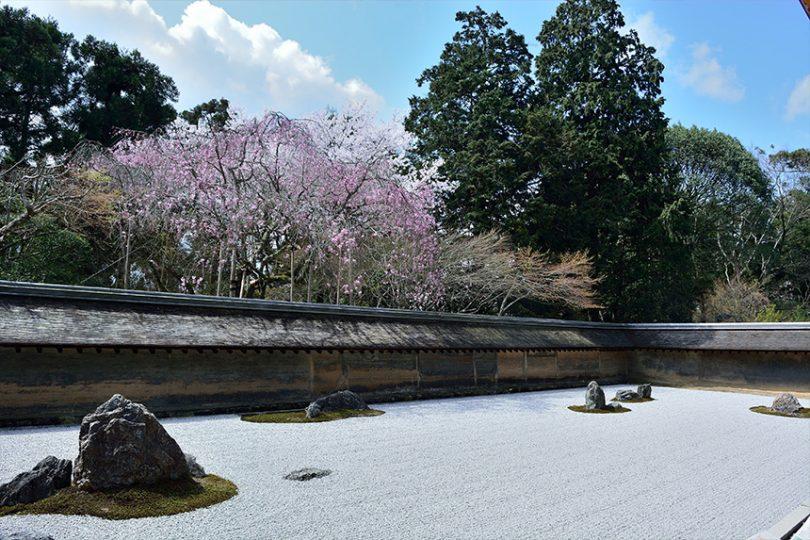 龙安寺~室町时代创建的石庭和枯山水的方丈庭园~