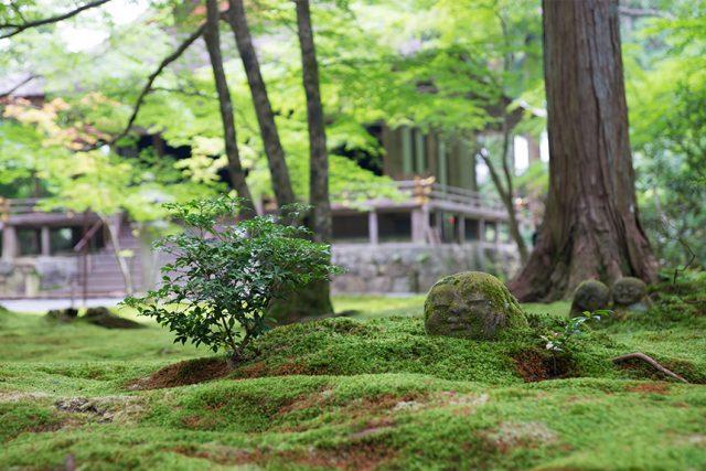 京都大原三千院♪