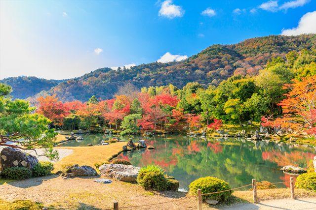 天龙寺~有着蓝山景色的庭园