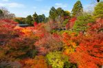 市松模様の庭園と通天橋のある東福寺