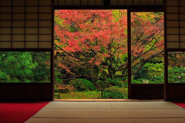 さまざまな窓から景色を楽しむ雲龍院
