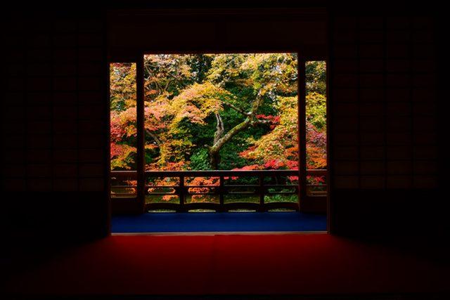 2018年秋!京都の禅寺で紅葉を貸し切りに!期間限定の特別拝観